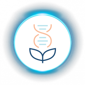iLuma-About Us-glow icons-Cultivates the most effective